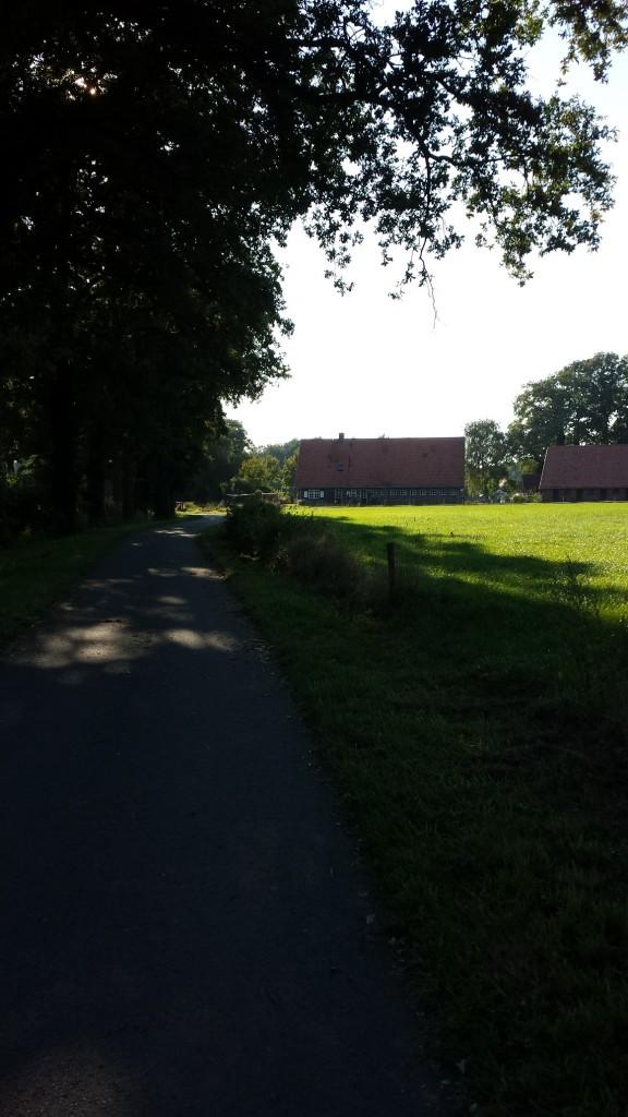 https://www.jeroensteenbeeke.nl/images/3104ed892d2fd62ef1ed76f0859bbc384c920ab3792a42d6f92f3e97e2001357.jpg
